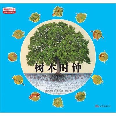 花盆里的苗圃 巨大的树 五月 不同的树叶形状 叶子对树木和对人类的