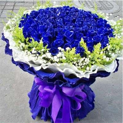 2017|蓝色妖姬鲜花图片大全|好看的玫瑰花图片大全|鲜花图片大全花束