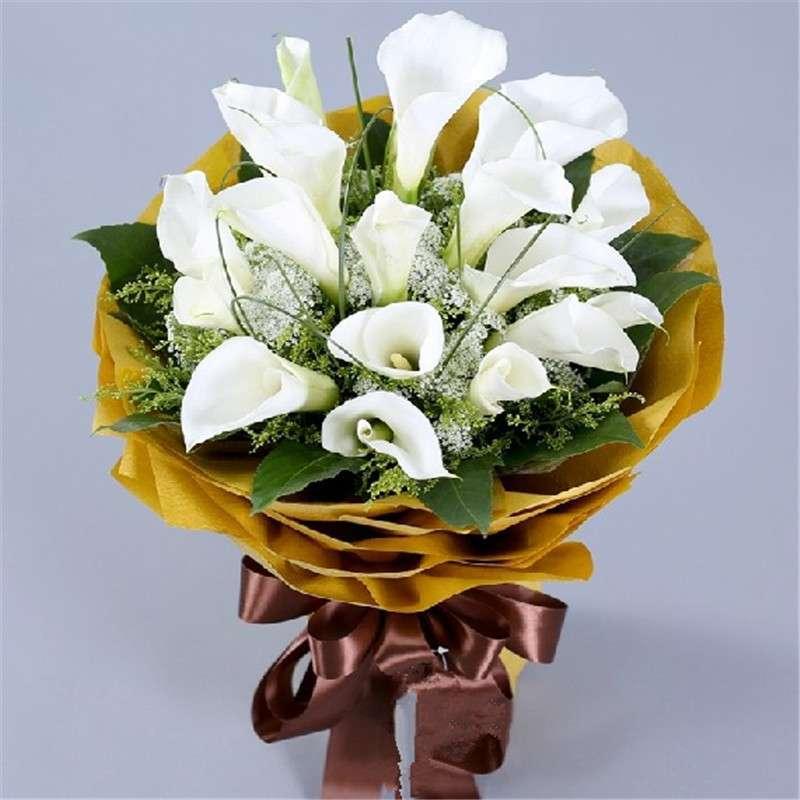 爱的印记 鲜花速递 19朵马蹄莲鲜花花束图片