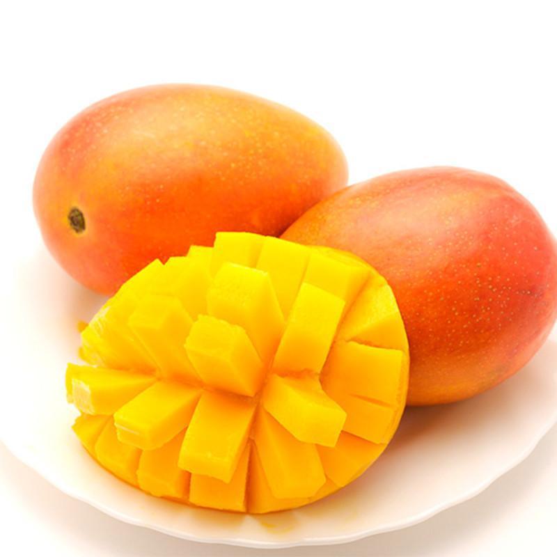 【现货】 新鲜水果 珍鲜汇牌 正宗攀枝花吉禄芒果 13斤装