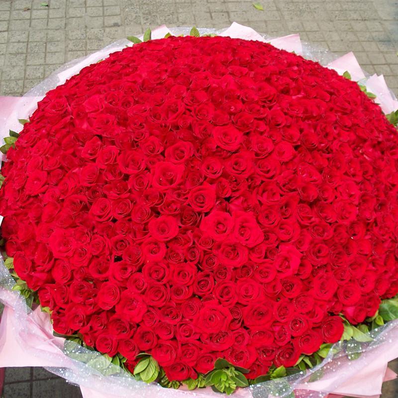 玫瑰鲜花求婚头像