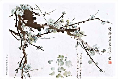 杏树枝干画法同于梅树