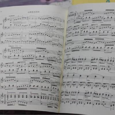拜厄钢琴基础教程(总审订版)图片
