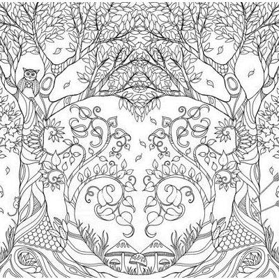魔法森林 秘密花园第二部减压填色涂鸦书籍