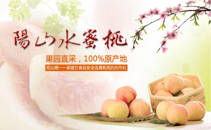 又到蜜桃成熟时!阳山水蜜桃  100%原产地!