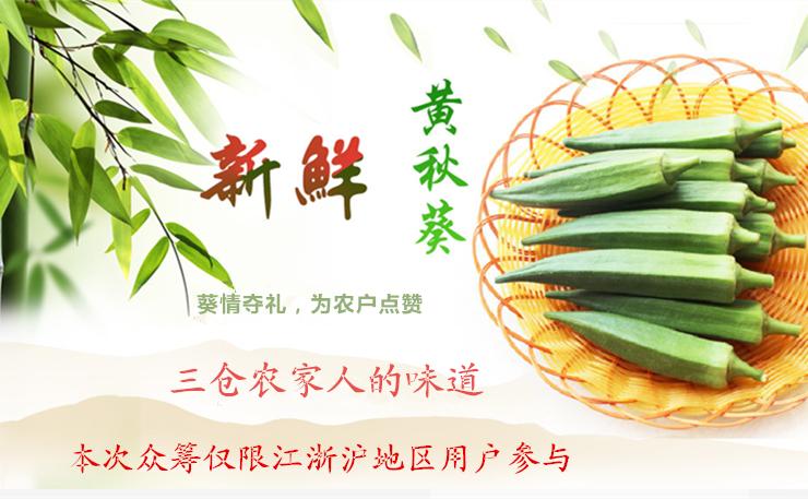 【热爱基层 村官助农】葵情夺礼,为农户点赞!