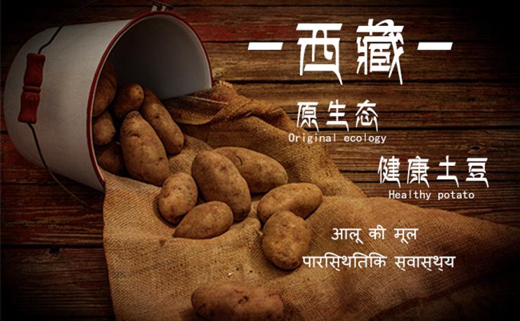 让全国人民都能吃到西藏原生态土豆