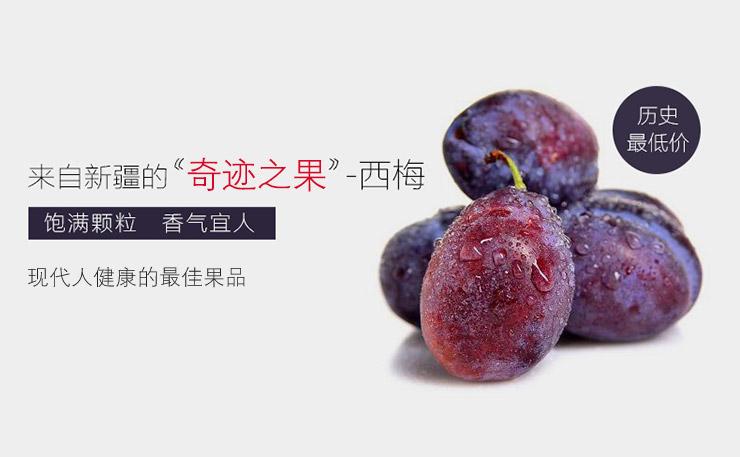 """源于新疆地区的""""长寿果""""- 西梅"""