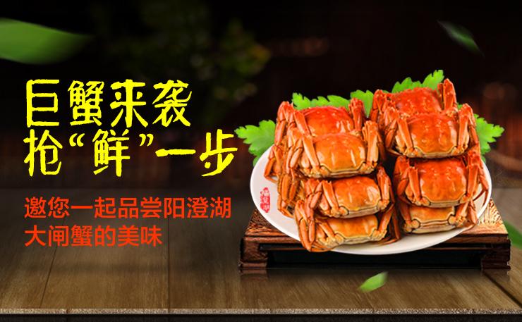 """品尝阳澄湖的美味 抢""""鲜""""一步"""