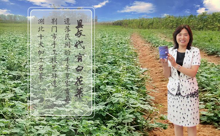 京山贡品特产白花菜万人众筹,传递农民幸福期待