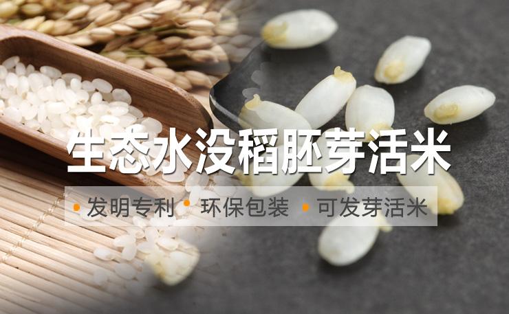 专利技术生态水没稻胚芽活米