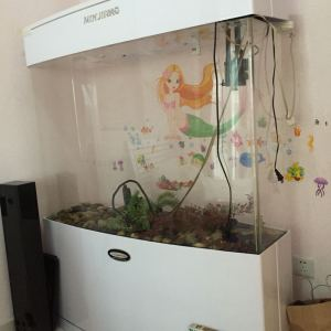 室内鱼缸效果图大全
