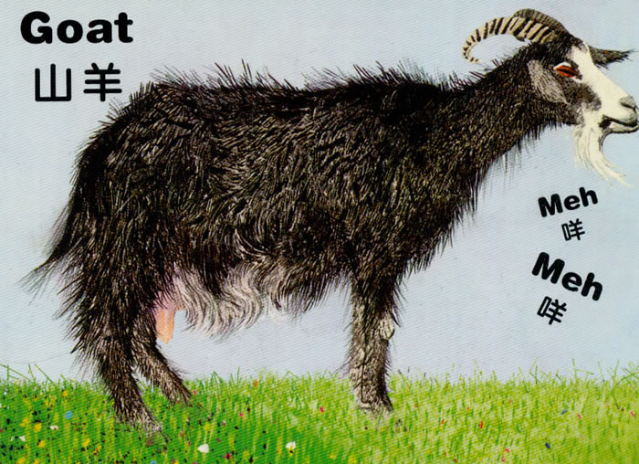 色彩大师双语认知纸板书 农场里的动物