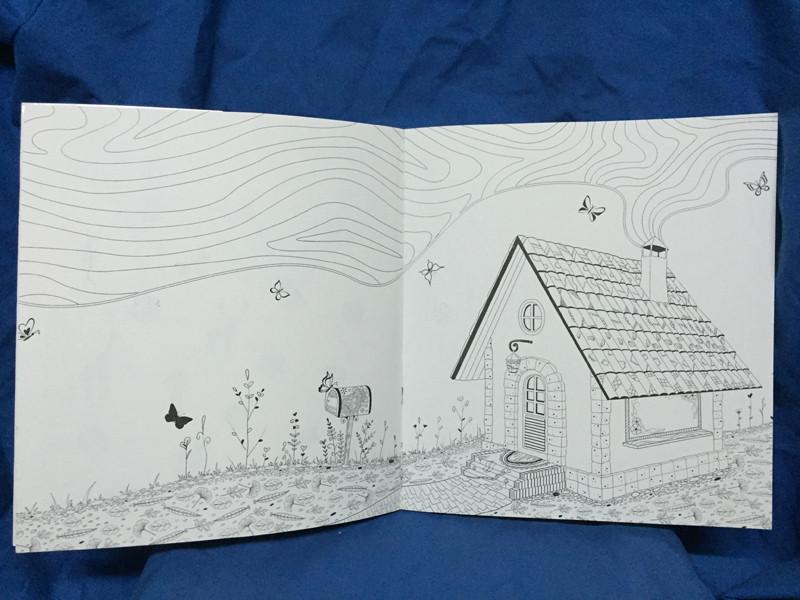神秘花园(2手绘涂色书) 邱天宇 【正版书籍】