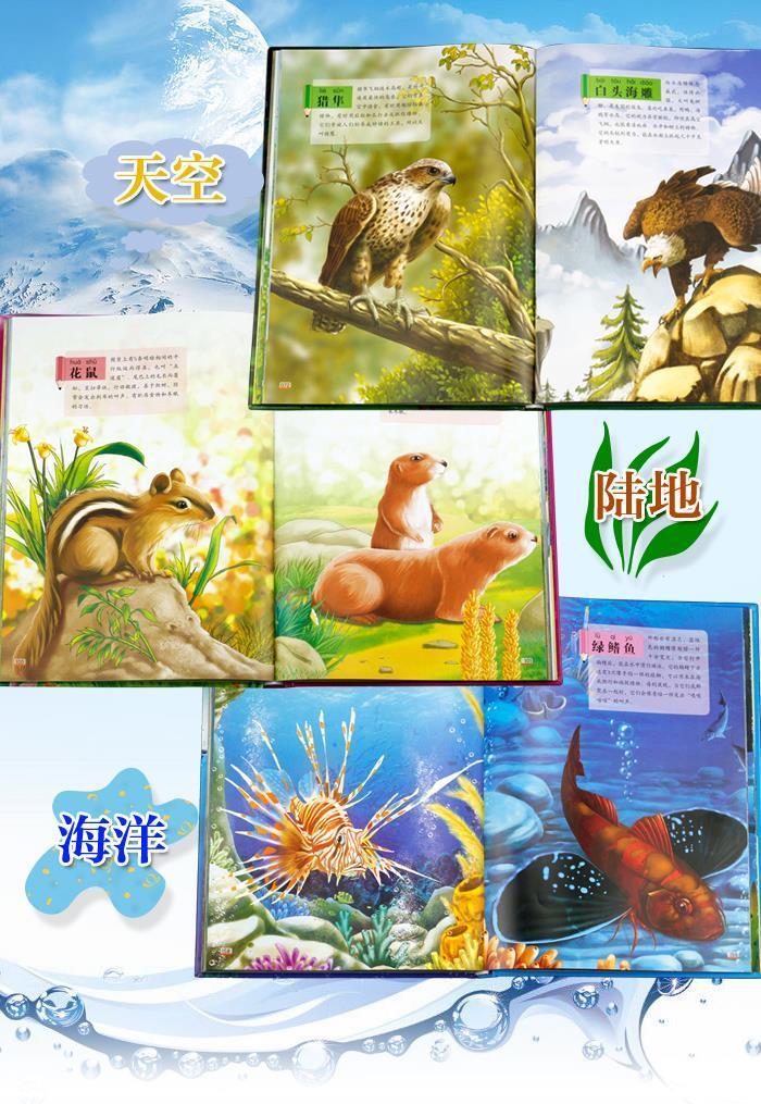 正版包邮 我的动物园:两栖爬行动物,鱼及海洋生物卷 刘小涵 天地出版