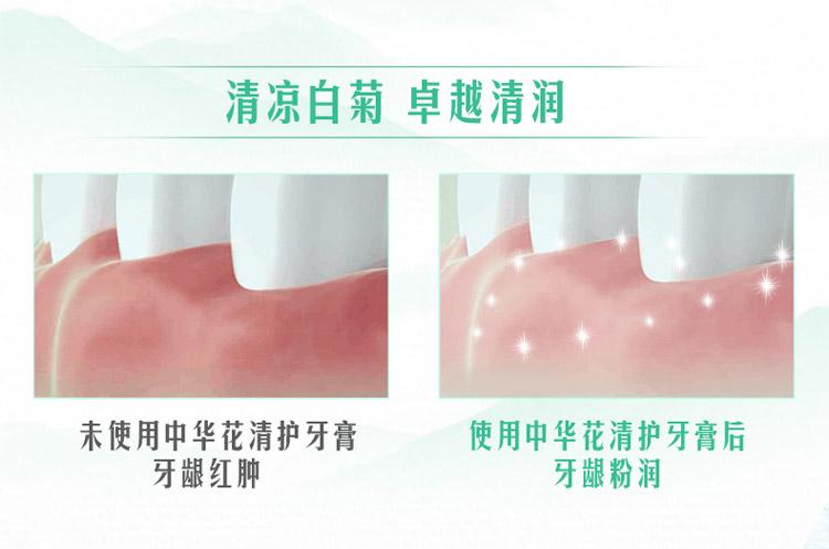 【苏宁专供】中华花清护清菊沁莲味牙膏140g