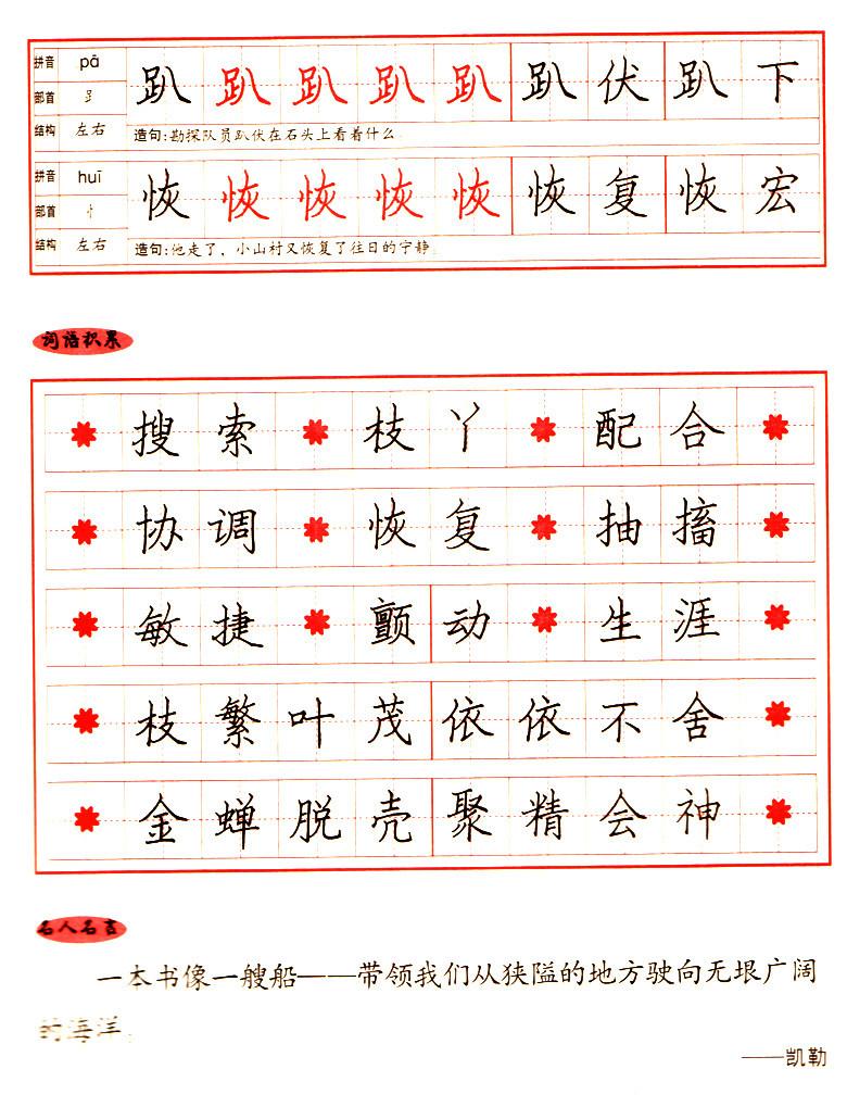 正版2012小学生硬笔书法练习 写字 江苏版 五年级上册 李放鸣书 钢笔