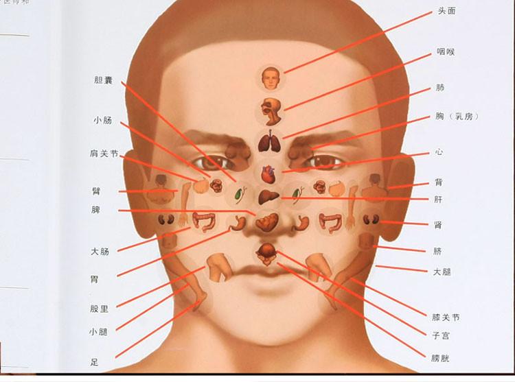 人体经络穴位按摩全图解/家庭保健精装16开2册养生保健彩印精装铜版纸