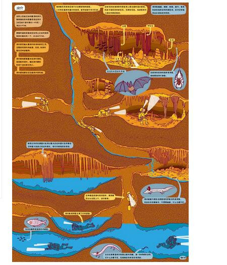 现货《地下水下》手绘百科绘本