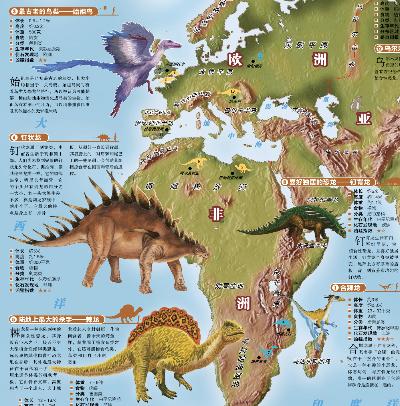 中国地图 世界地图 恐龙地图 海洋动物 4合1套装