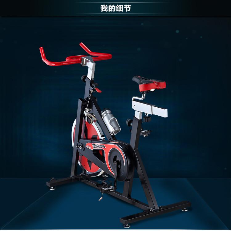 EVERE艾威链条双向动感BC4330单车家用传锦星脚踏桶图片