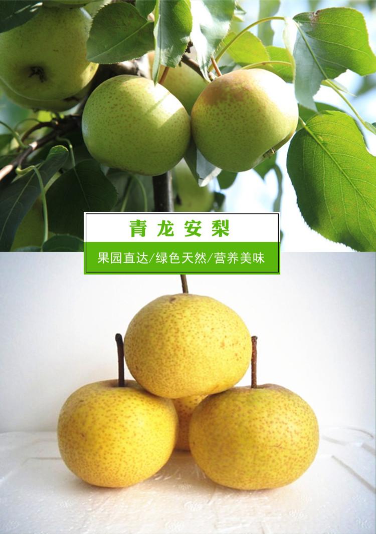 【中华特色馆】河北 青龙 特产 农家 安梨(酸梨) 4斤装 包邮