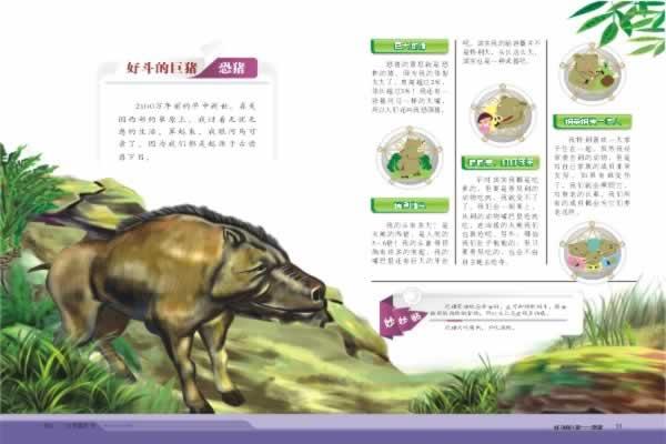 远古动物的照片