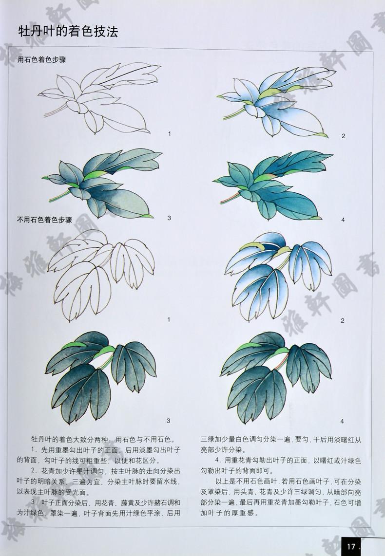画法 16开牡丹工笔画花卉画国画技法绘画教材作品赏析绘画步骤牡丹