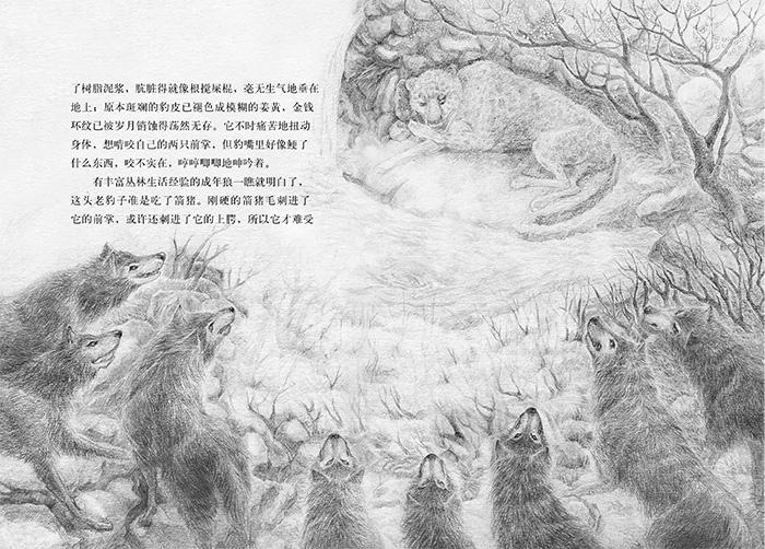 小战马(音频讲播版)图片