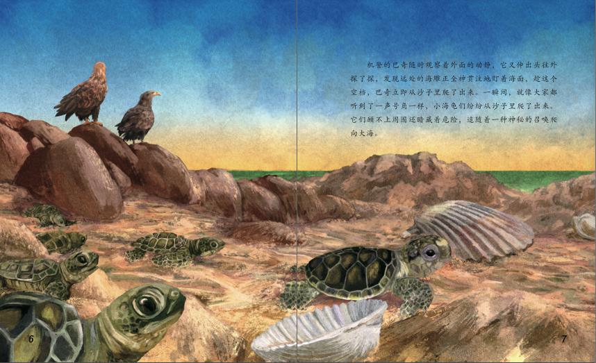 海洋动物探秘故事丛书——绿海龟和红海龟