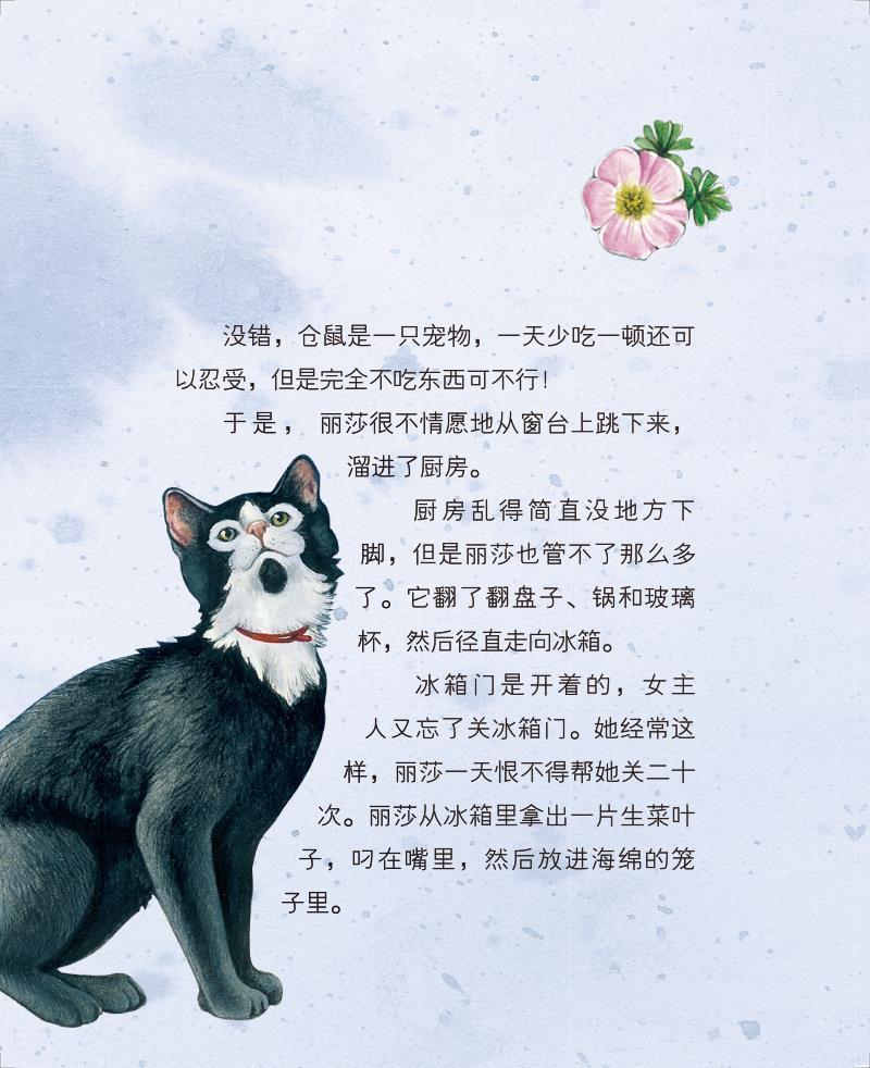 正版包邮 我的真实动物朋友:猫勇士丽莎 〔意〕萨拜娜·科洛雷多/文