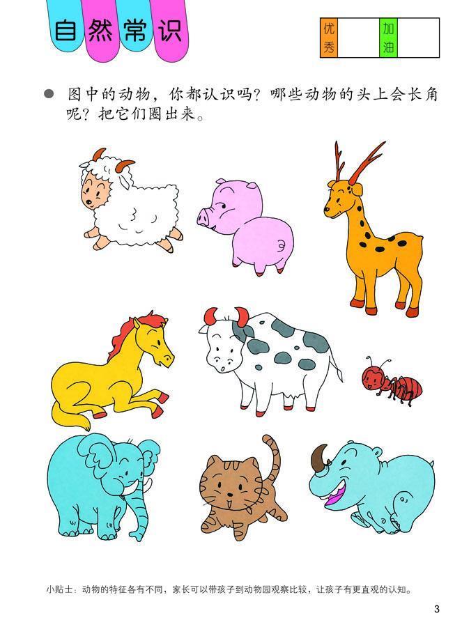 包括交通工具涂鸦本,海洋世界涂鸦本,可爱动物涂鸦本,水果蔬菜涂鸦本