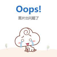 【飞鸿至达软件数码软件】用友T1商贸宝U盘版