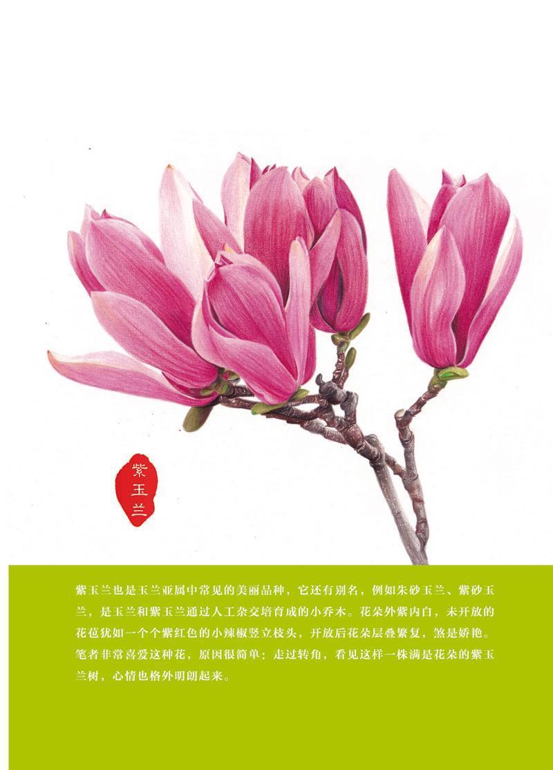 123 彩铅花绘开 超细腻的彩铅花卉绘制宝典(全彩)