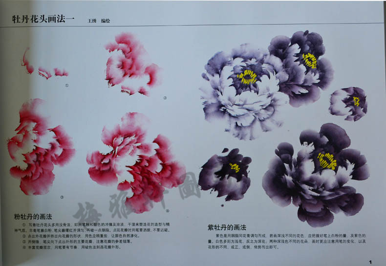 大8开铜板技法工笔画人物教程花卉教程彩印画教材国画橡皮泥图片