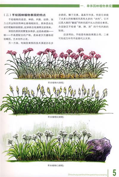 手绘园林植物配置与造景(平装)