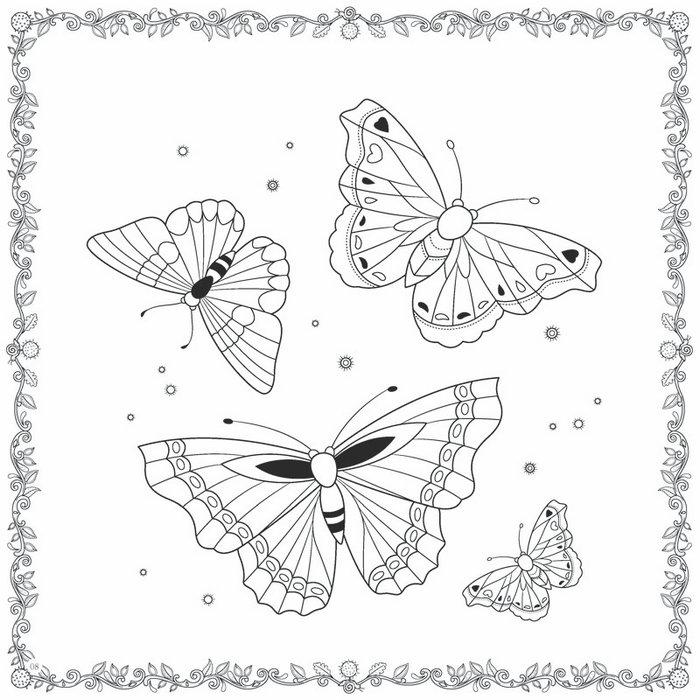 美丽蝴蝶简笔画涂色