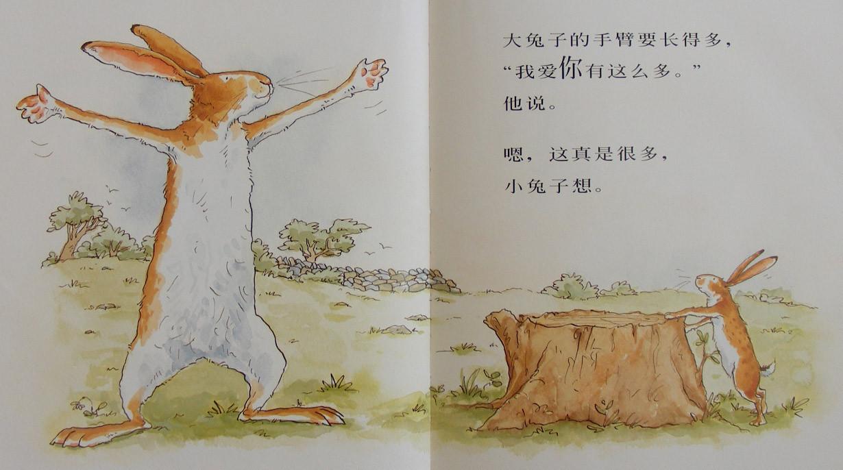你注意,在**张扉页上,作者画了一只小兔子骑在一只大兔子的脖子上.