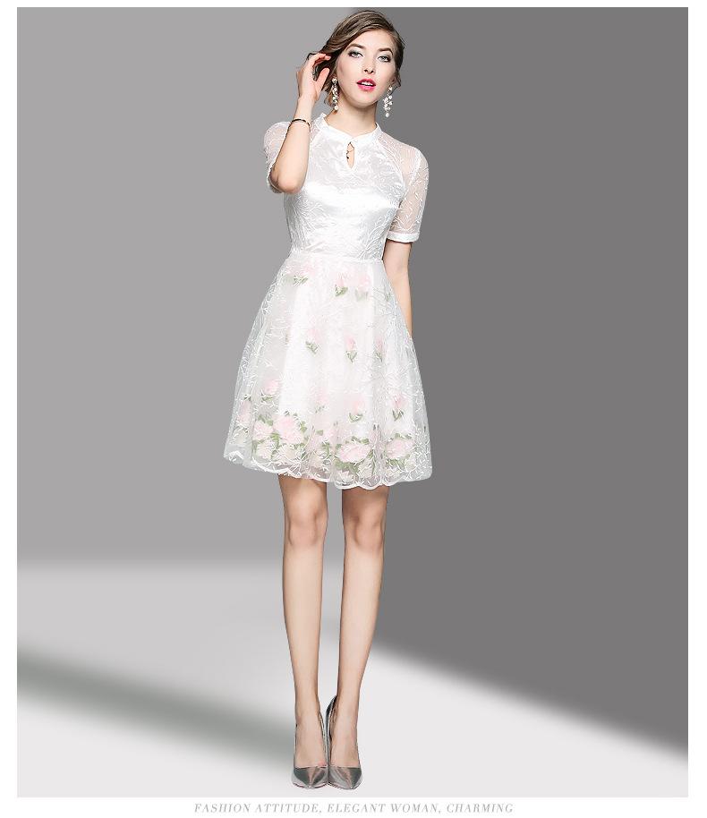 新款立领连衣裙