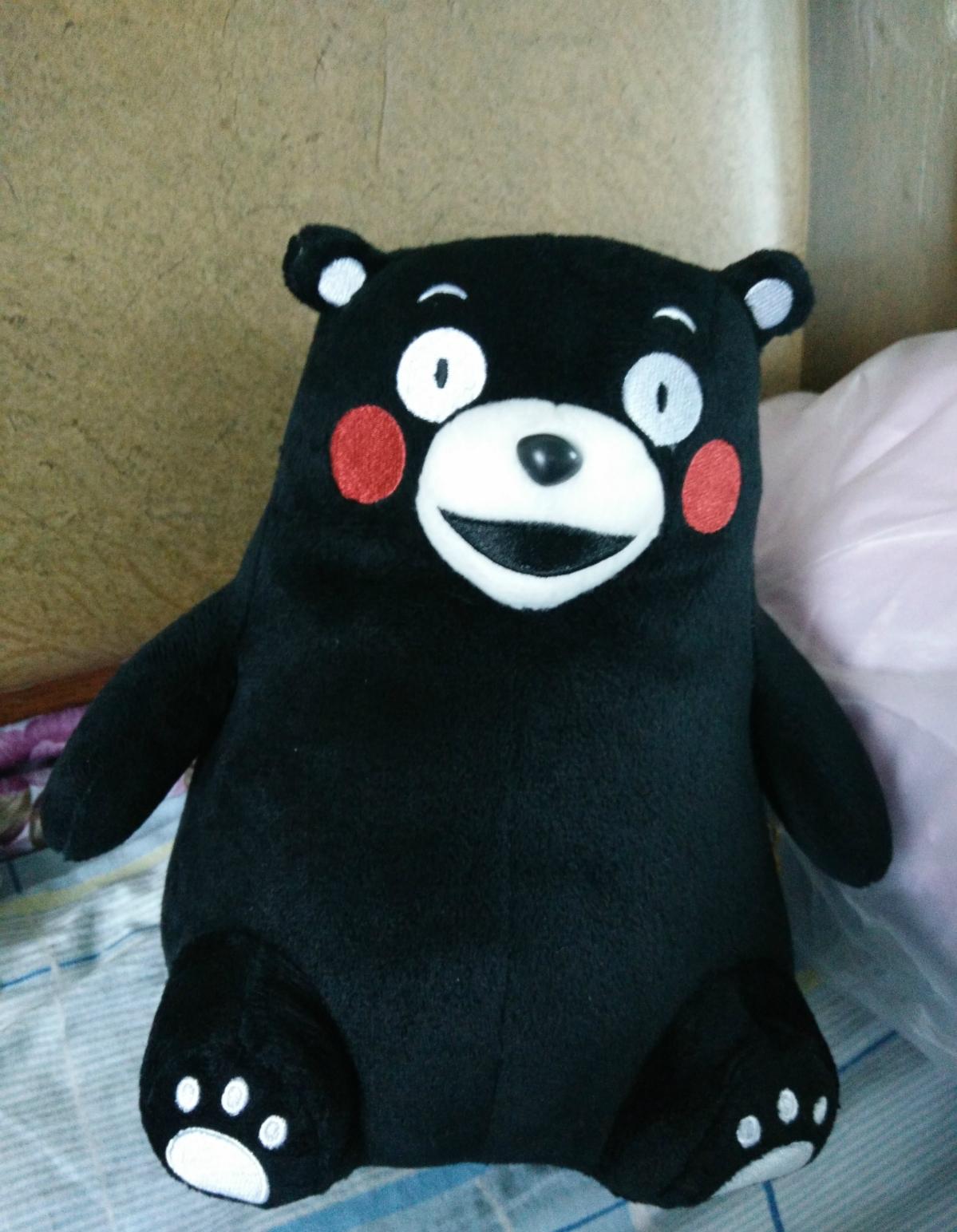 收到熊熊,哈哈达,好可爱和漫画中的熊本一样.