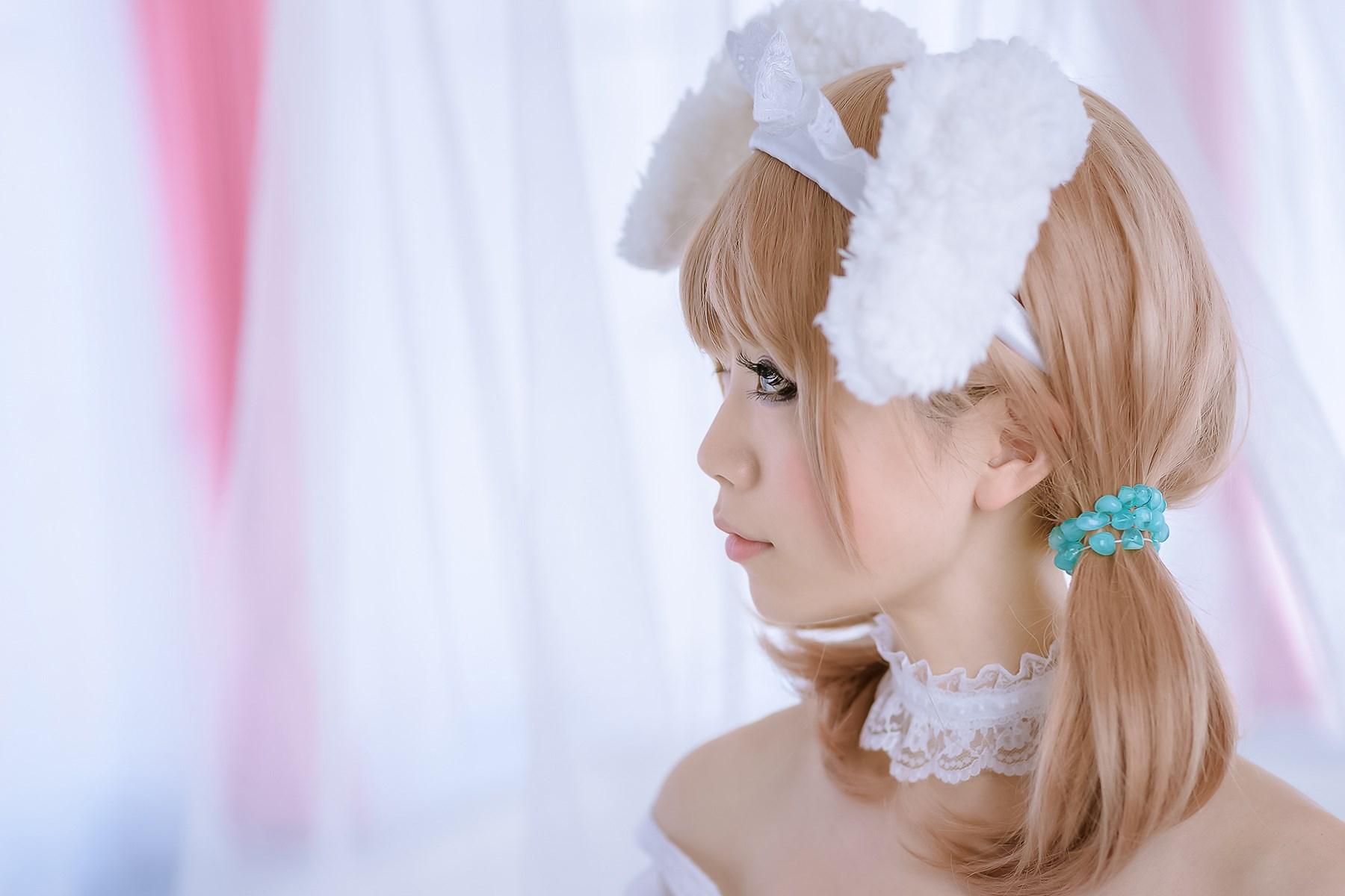 【兔玩映画】白网里的兔子 兔玩映画 第22张