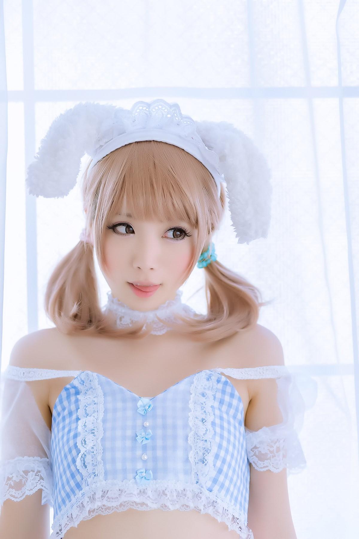 【兔玩映画】白网里的兔子 兔玩映画 第1张