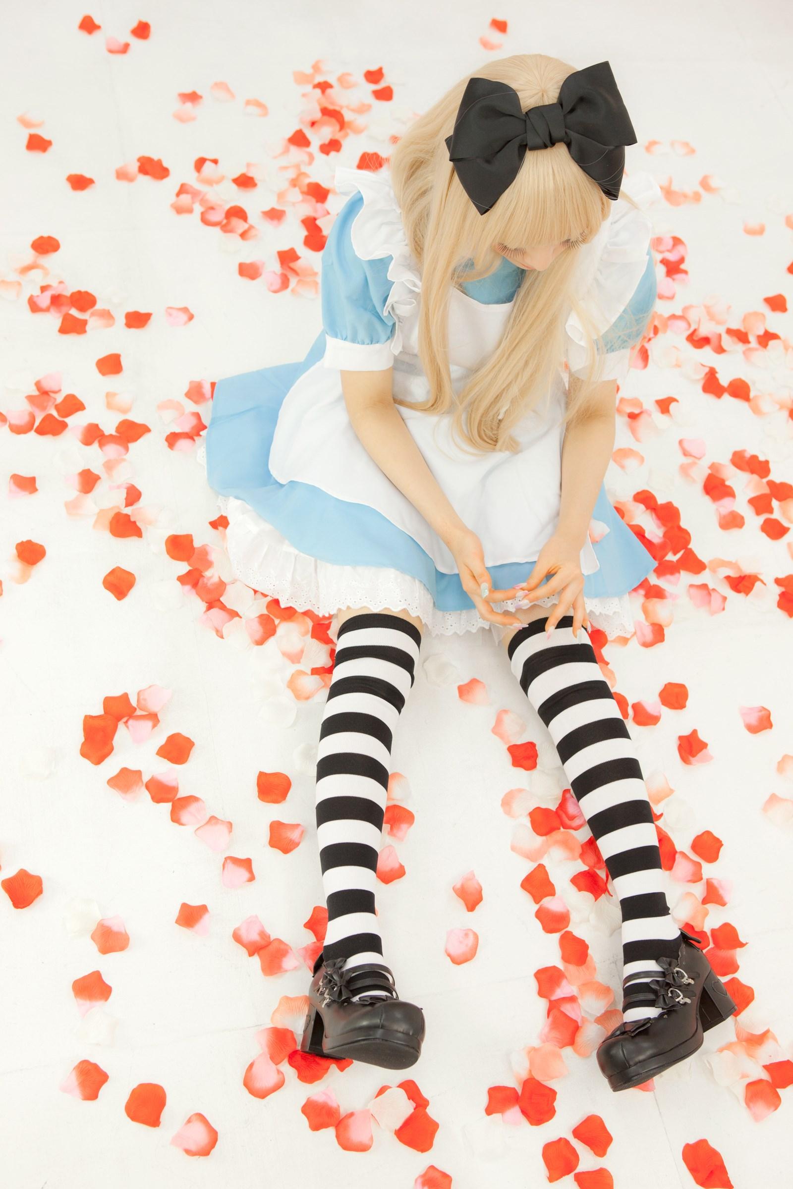 【兔玩映画】爱丽丝少女 兔玩映画 第16张
