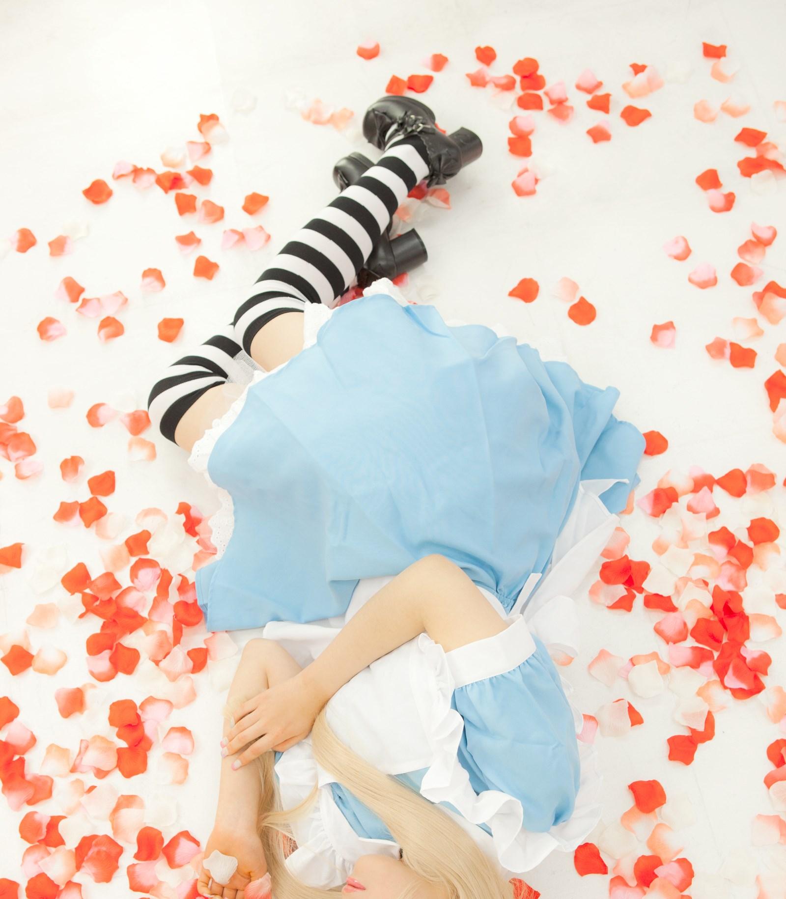【兔玩映画】爱丽丝少女 兔玩映画 第10张