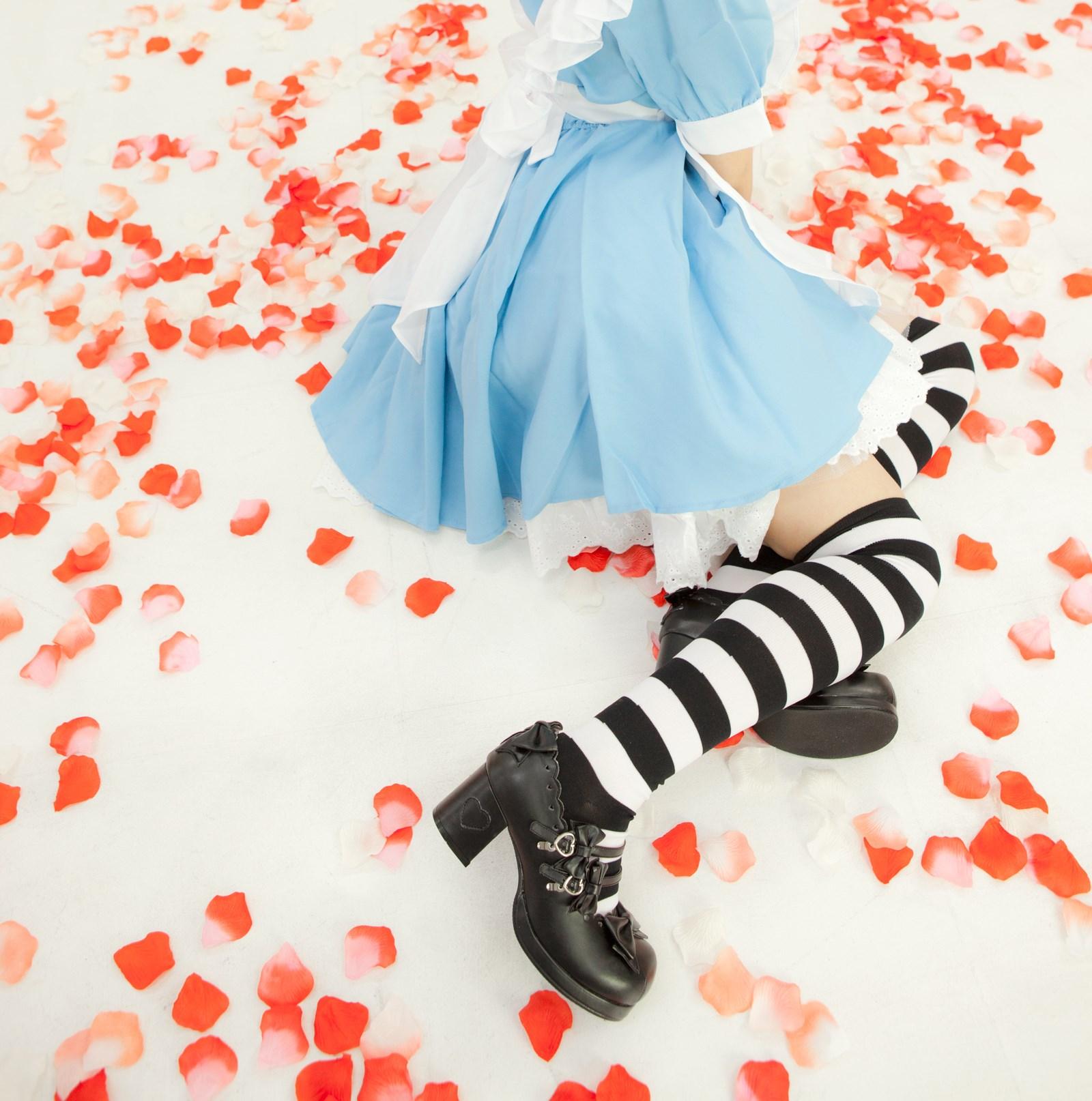 【兔玩映画】爱丽丝少女 兔玩映画 第9张