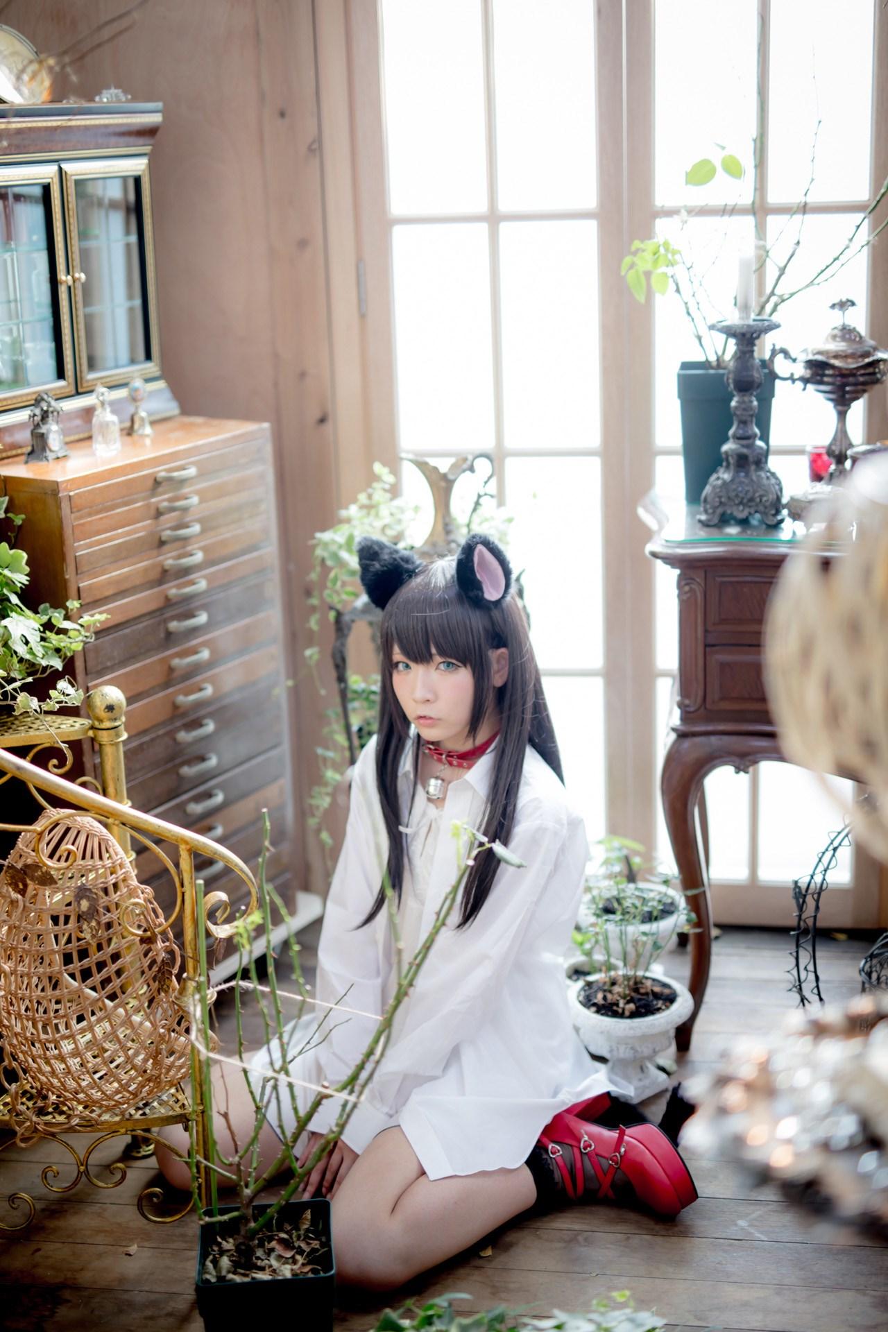 【兔玩映画】猫耳娘 兔玩映画 第59张