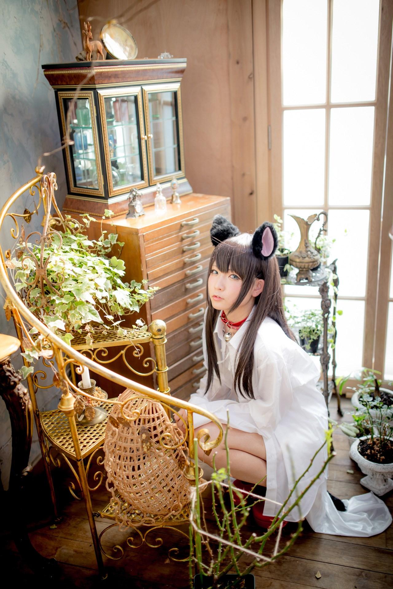 【兔玩映画】猫耳娘 兔玩映画 第50张