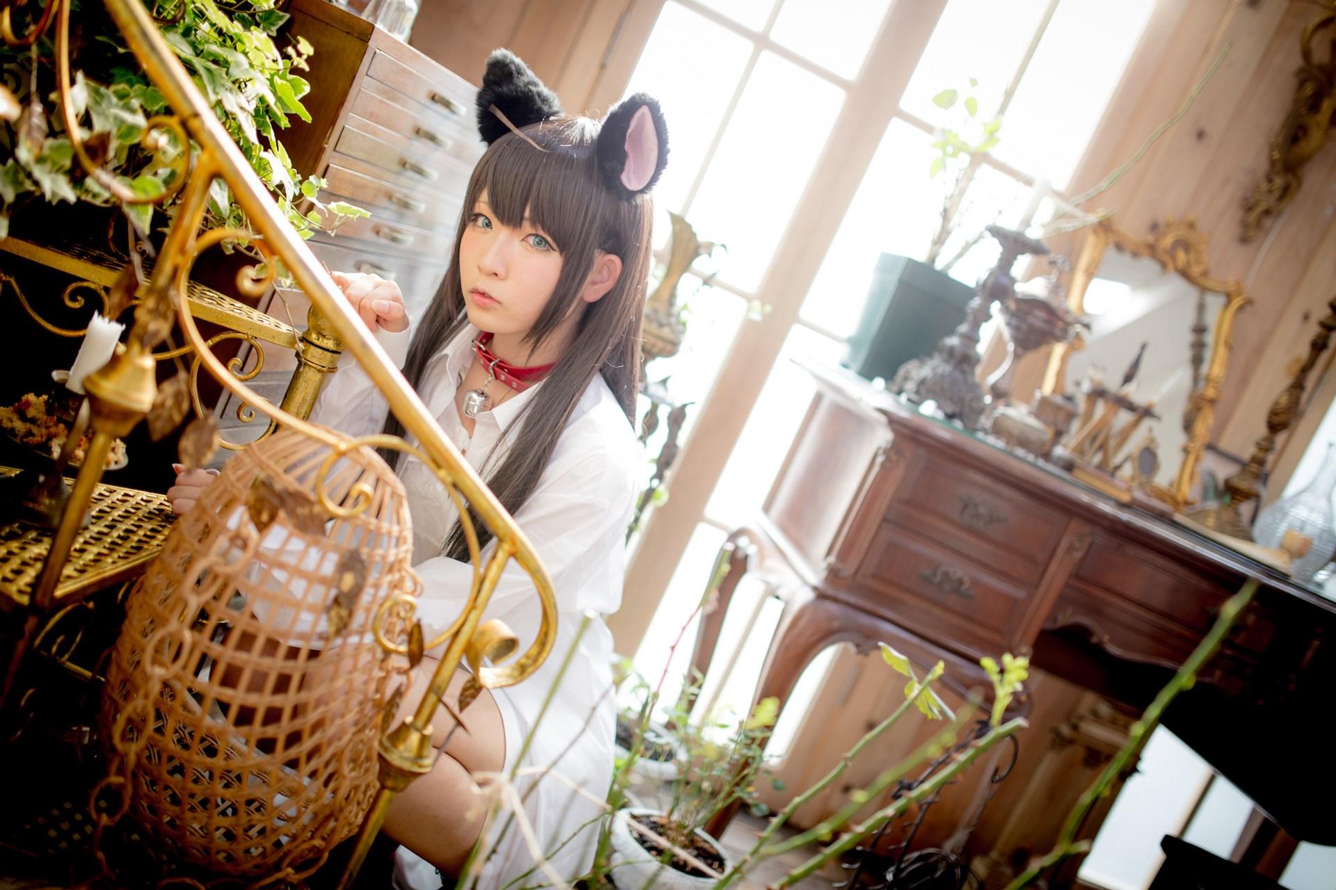 【兔玩映画】猫耳娘 兔玩映画 第47张