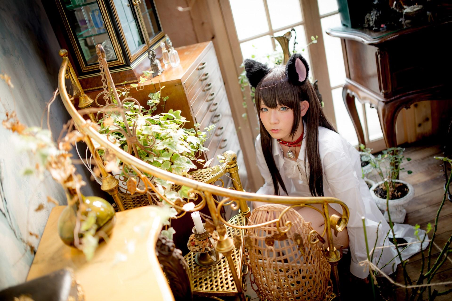 【兔玩映画】猫耳娘 兔玩映画 第44张