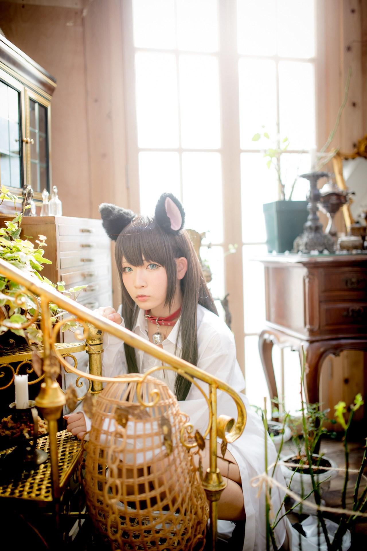 【兔玩映画】猫耳娘 兔玩映画 第2张
